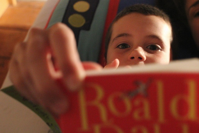Photo of a boy reading a Roald Dahl book