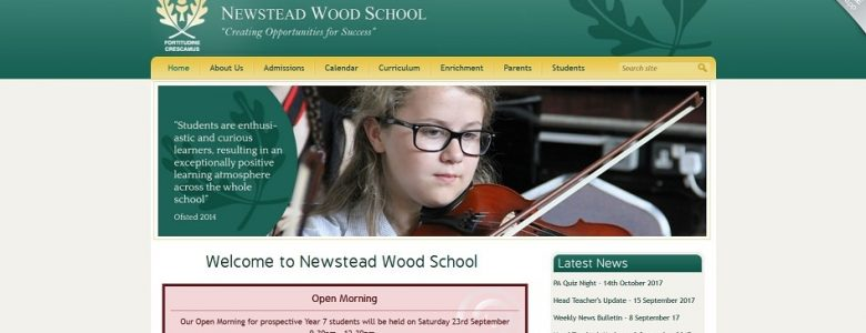 Screenshot of the Newstead Wood School website