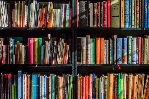 Photo of books in a bookshelf