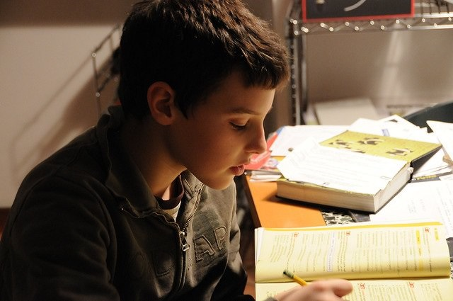 Photo of a boy studying at home