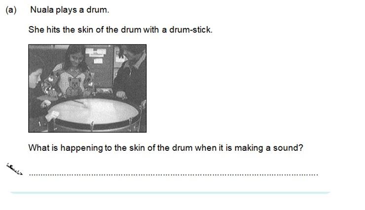 KS2 SAT Science Sample Question 10