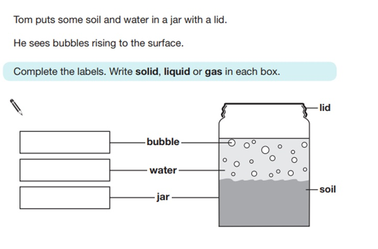 KS2 SAT Science Sample Question 6