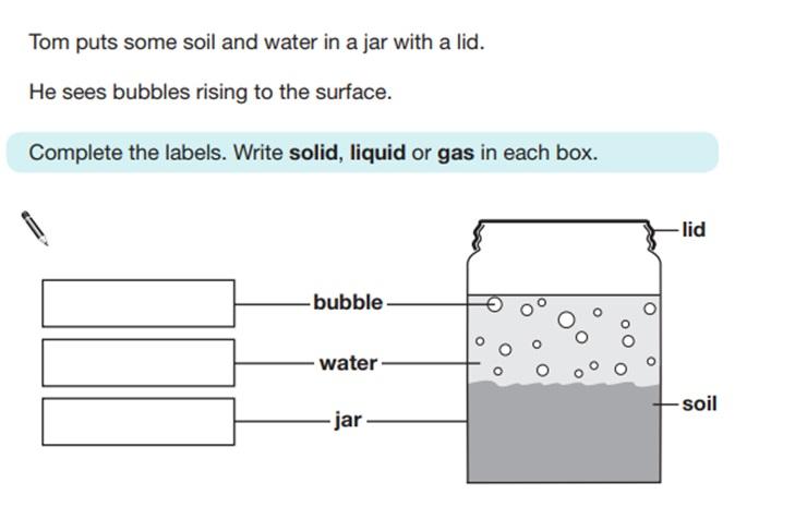 KS2 SAT Science Sample Question 6